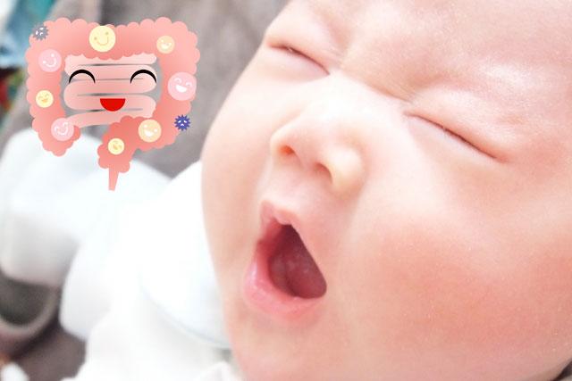腸がきれいな赤ちゃん